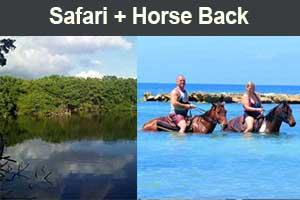Safari Tour& Horse Back Tour